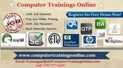 Informatica Training online with Placement program in USA
