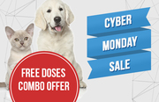 Save More on Cyber Monday Pet Deals and Discounts