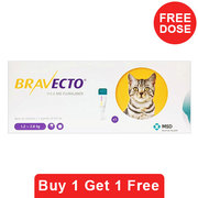 Bravecto Spot On for Cats| Bravecto Spot On Treatments For Cats