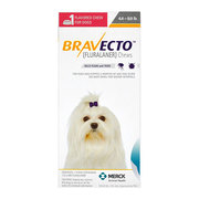 Bravecto for Dogs - Buy Bravecto Chewable for dogs at Cheapest Price