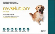 Revolution for Dogs - Buy Revolution Multi parasitic preventative